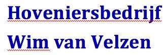 Wim van Velzen